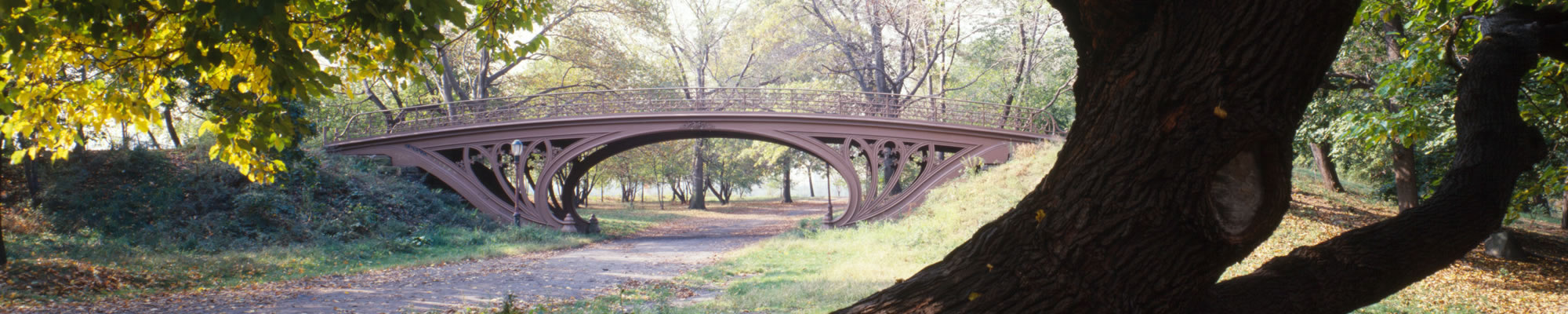 carousel central park