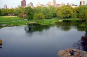 Turtle Pond - Central Park