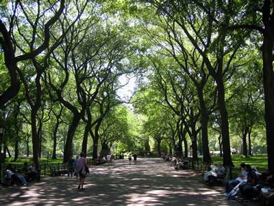 central park. The Mall in Central Park.
