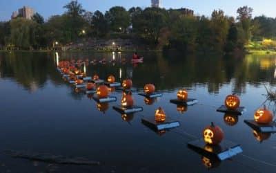 Halloween Pumpkin Flotilla 2019