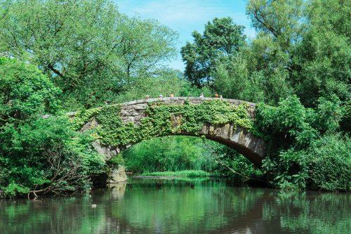 Gapstow Bridge - The Pond Central Park